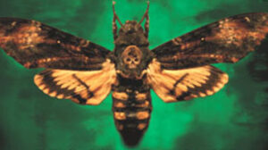Silence of the lambs book review