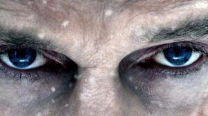 The Grey | Liam Neeson | 2012