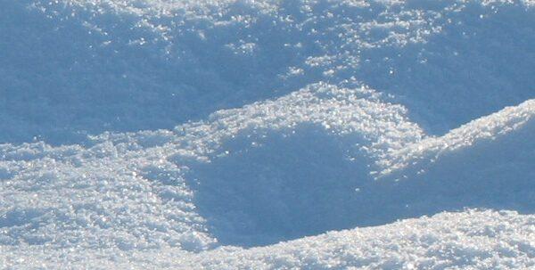 Snow - Emmanuel Boutet