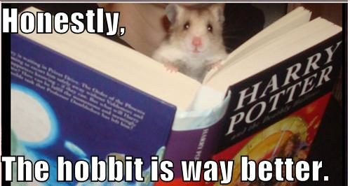LOTR Meme Harry Potter