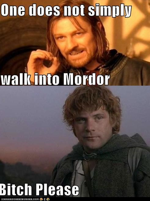 LOTR Meme One Does Not...